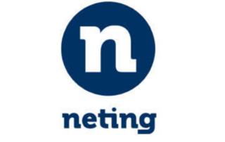 NETING logo